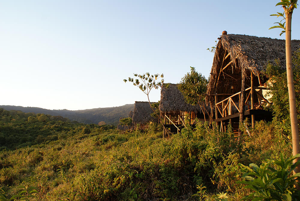 Ngorongoro Crater Area Tented camp Forest camp