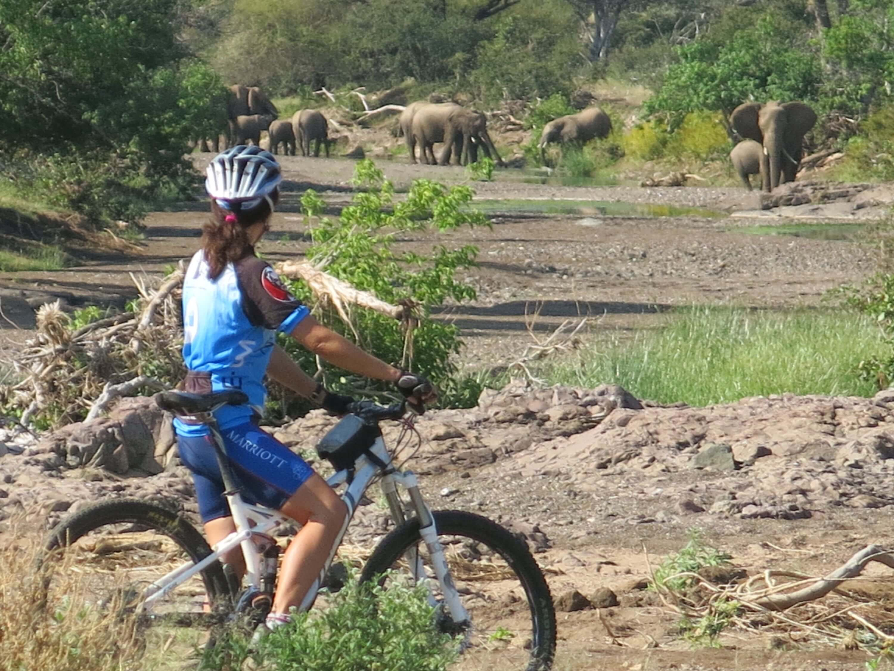 Cycling Safari Tanzania safaris
